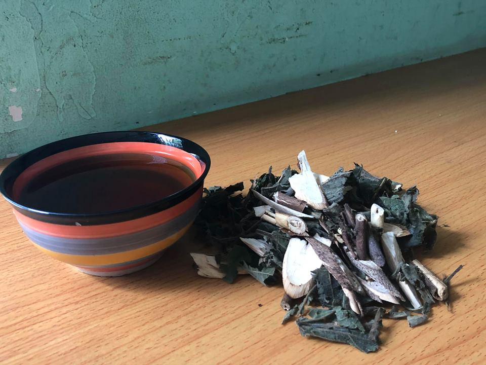 Tác dụng của cây an xoa tại Hà Nội