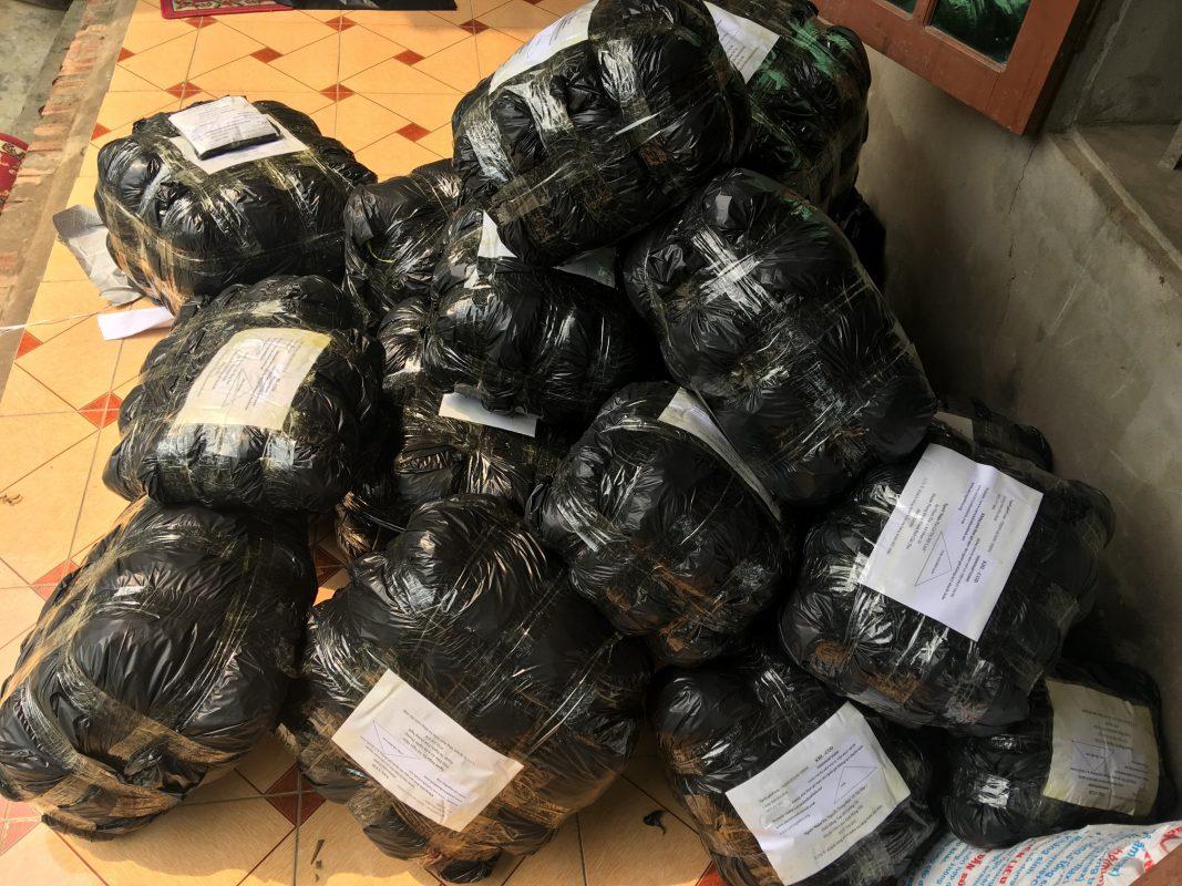 Mua bán cây an xoa tại Thái Nguyên giá sỉ View 1