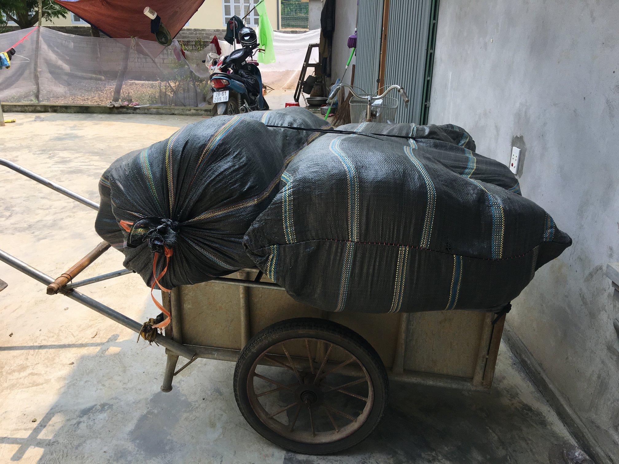 Mua bán cây an xoa tại Đà Nẵng hỗ trợ giải độc gan view 2